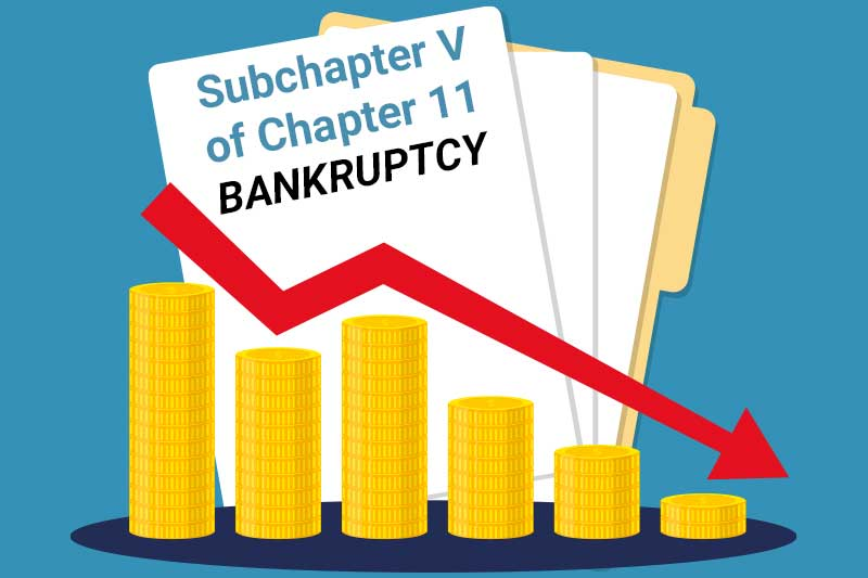 You are currently viewing Subchapter V of Chapter 11